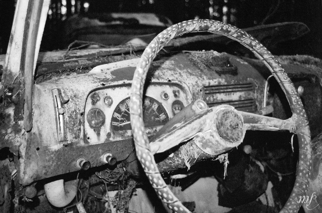 A Peugeot's steering wheel (Car cemetery Châtillon)
