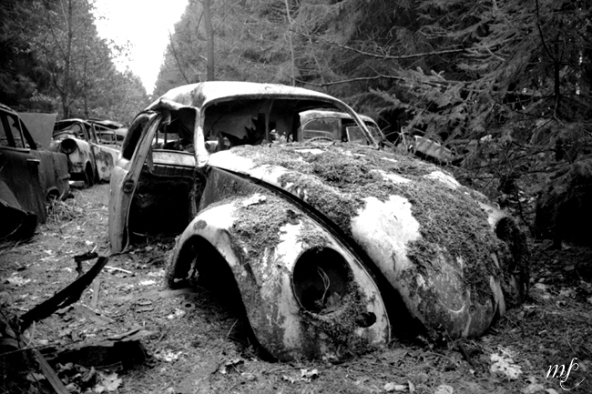 VW lost on the car cemetery (Car cemetery Châtillon)