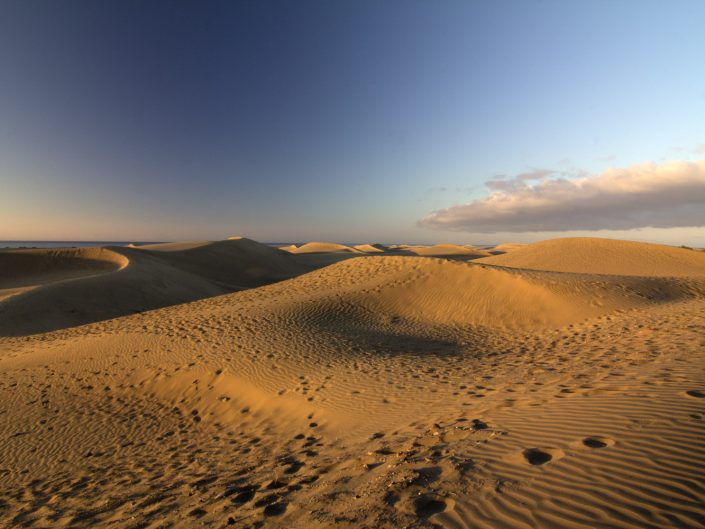 Waiting for the sun rising (Dunas de Maspalomas)
