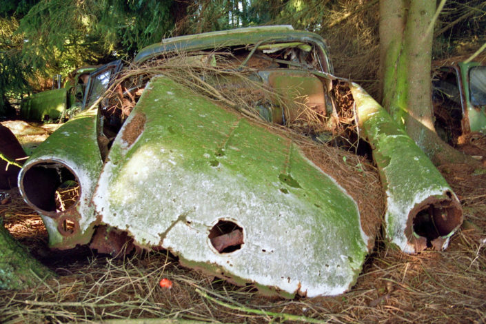 Another rotten car (Car cemetery Châtillon)
